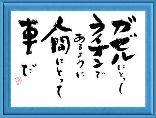 1230_2011.jpg